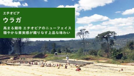 20190314_uraga_NEWS