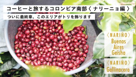 20190626_tokusetsu_NEWS