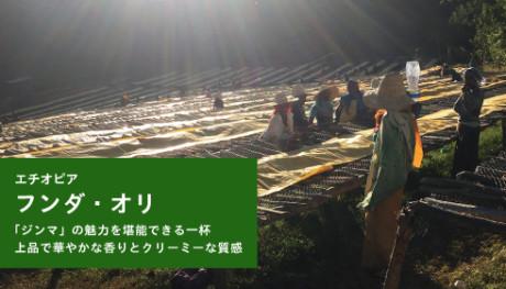 20190806_hundaoli_NEWS