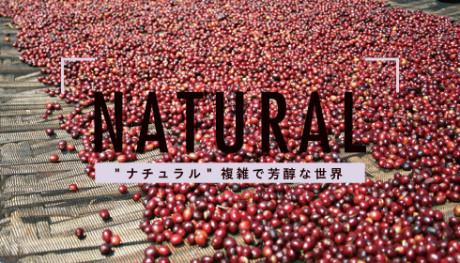 20190925_natural_NEWS